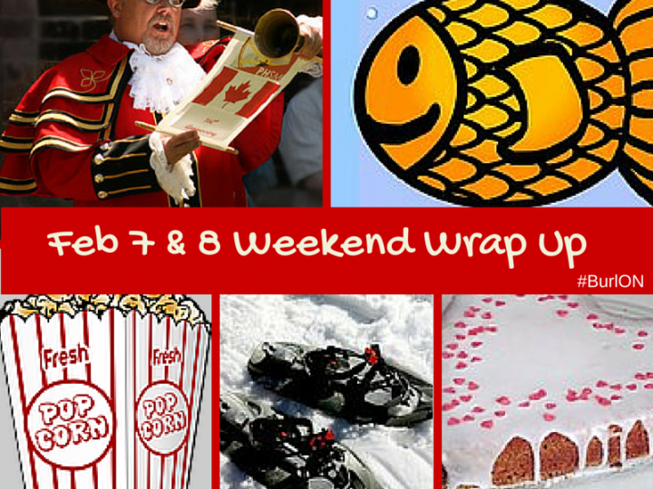 February 7th and 8th Weekend Wrap Up