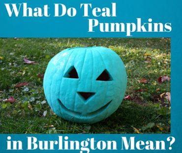 teal-pumpkins-burlington