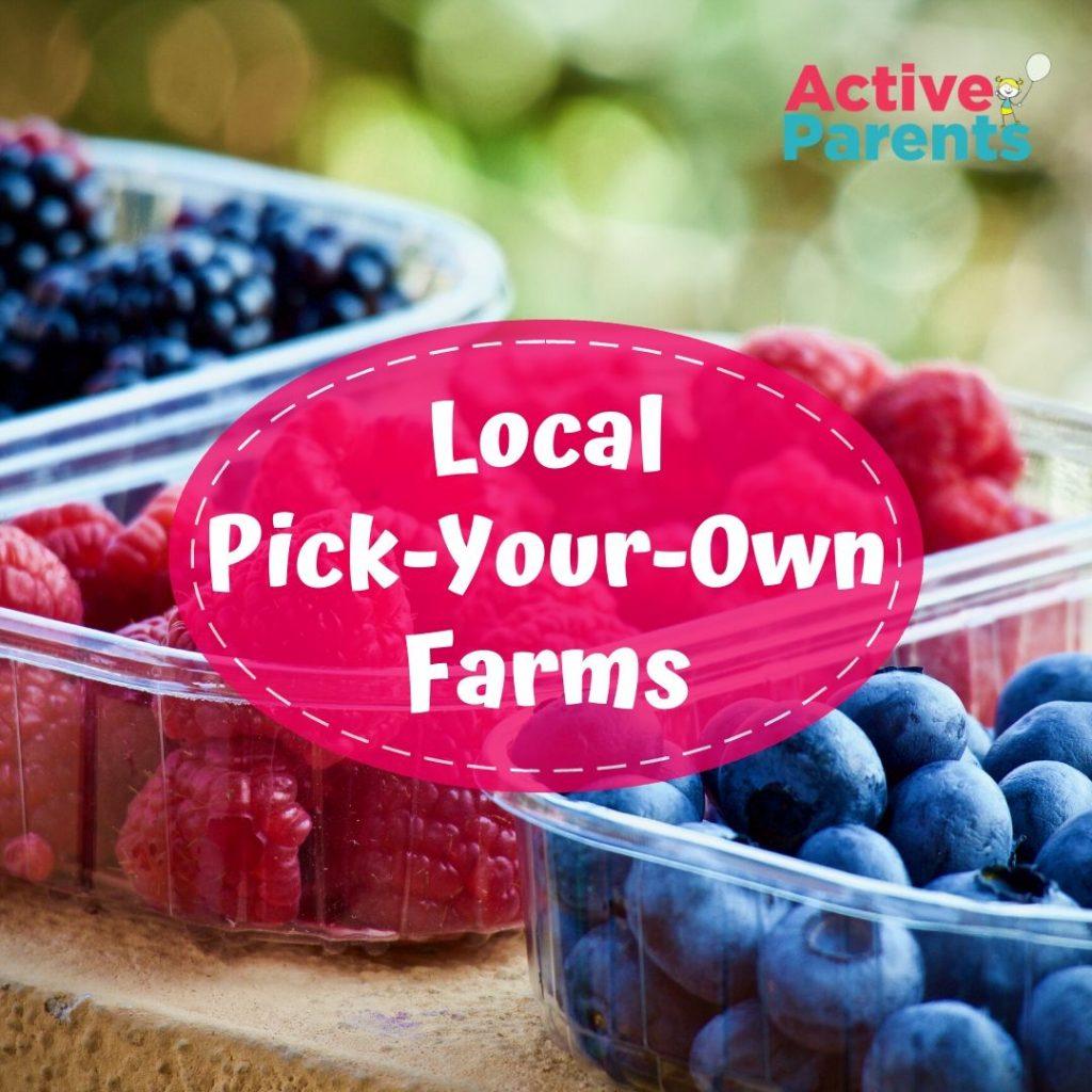 pick your own farm hamilton burlington halton