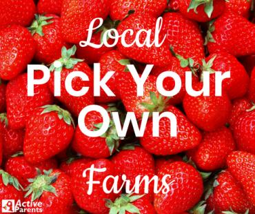 local pick your own farms burlington active parents