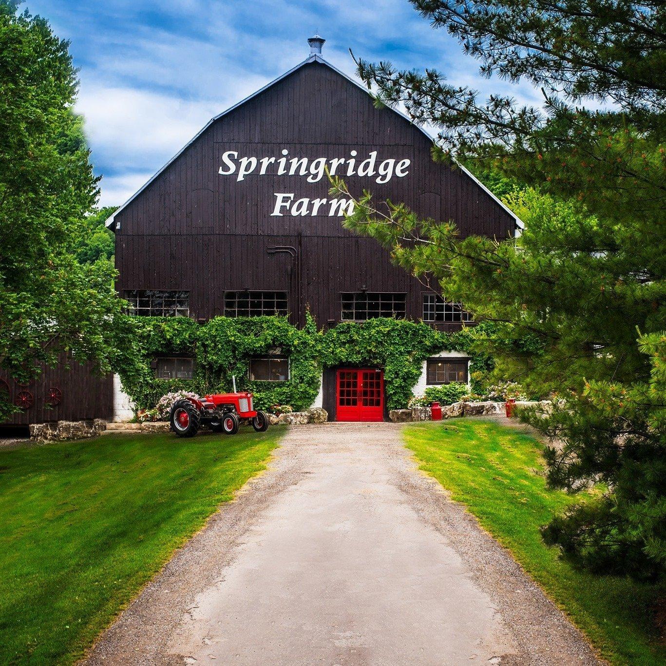 springridge farm in milton
