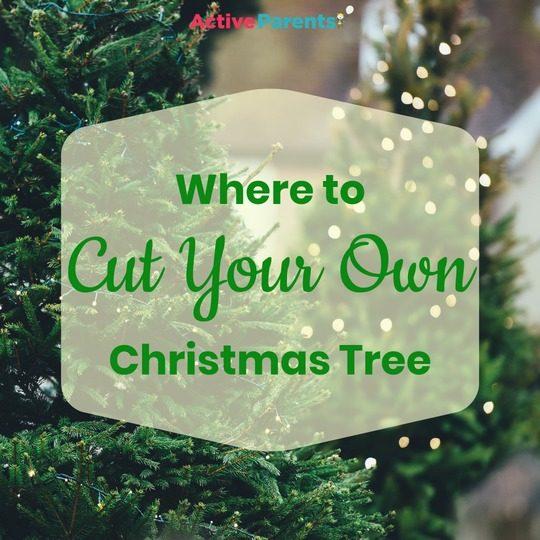 Christmas Tree Farms Near Burlington, ON