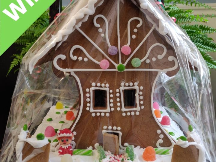 Win a Beautiful Gingerbread House from Molly Cake!