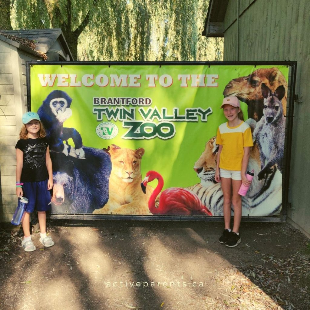 Opening gates at Brantford Zoo
