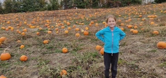 pick your own pumpkin farms and patches