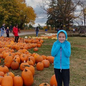 pick your own pumpkin patches and farms