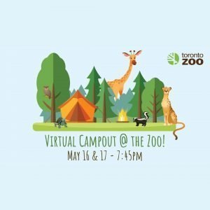 Toronto Zoo Camp Out