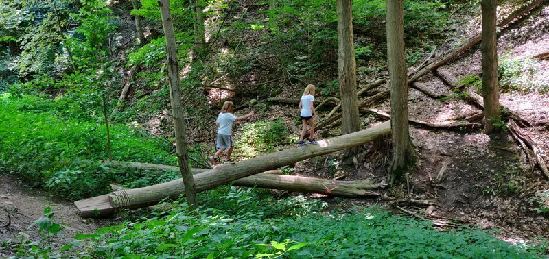 hiking with kids in hamilton chedoke radial trail