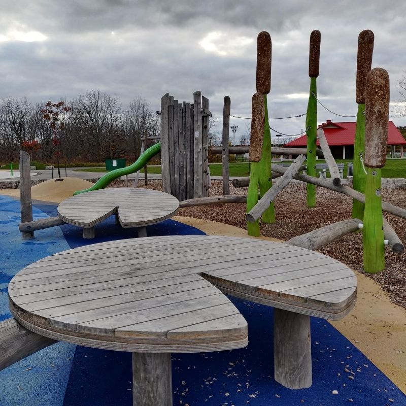 William Connell PNatural Playground in Hamilton