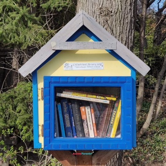 little free library header image