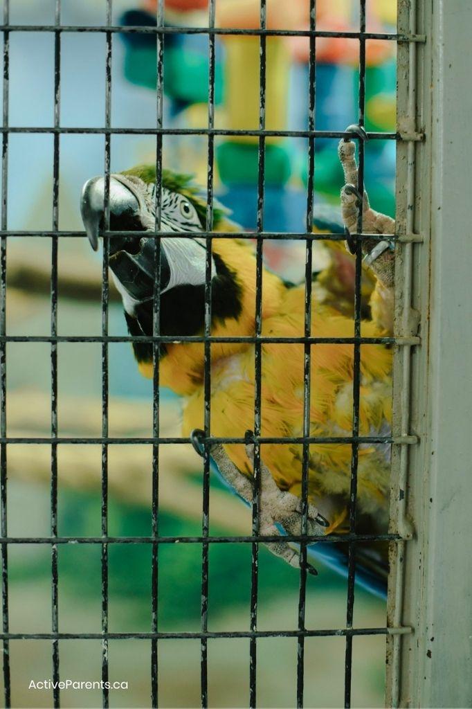 hamilton bird sanctuary