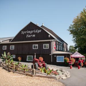 Springridge Farm in Milton, near Oakville and Burlington