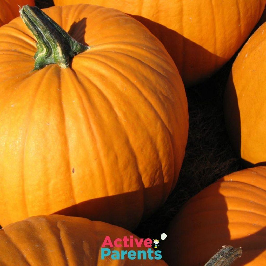 Donate Your Pumpkins